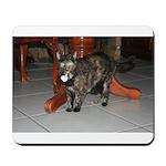 Tortoishell Cat 2 Mousepad