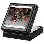 Tortoishell Cat 2 Keepsake Box