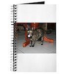 Tortoishell Cat 2 Journal