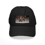 Tortoishell Cat 2 Black Cap