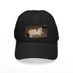 Sleeping Cat Black Cap