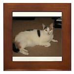 Sleeping Cat Framed Tile