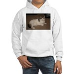 Sleeping Cat Hooded Sweatshirt