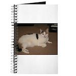 Sleeping Cat Journal