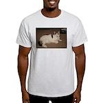 Sleeping Cat Light T-Shirt