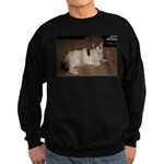 Sleeping Cat Sweatshirt (dark)