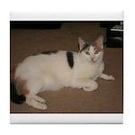 Sleeping Cat Tile Coaster
