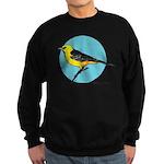 ALTAMIRA ORIOLE 1b Sweatshirt (dark)