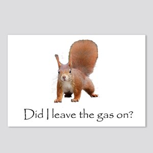 Squirrell Postcards (Package of 8)
