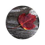 Red Autumn Leaf 3.5