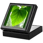 Green Heart Leaf Keepsake Box