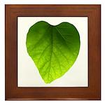 Green Heart Leaf Framed Tile