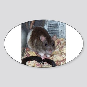 Fancy Rat Shirt Oval Sticker