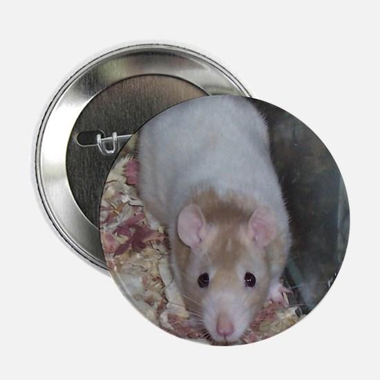 Fancy Rat Shirt Button