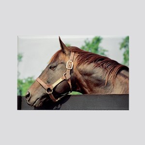 Seattle Slew Rectangle Magnet