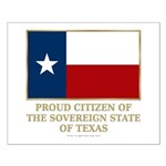 Texas Proud Citizen Small Poster