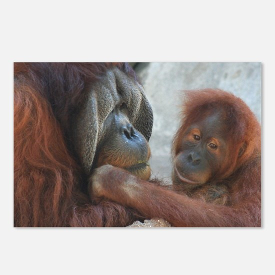 Orangutan Mom and Child Postcards (Package of 8)