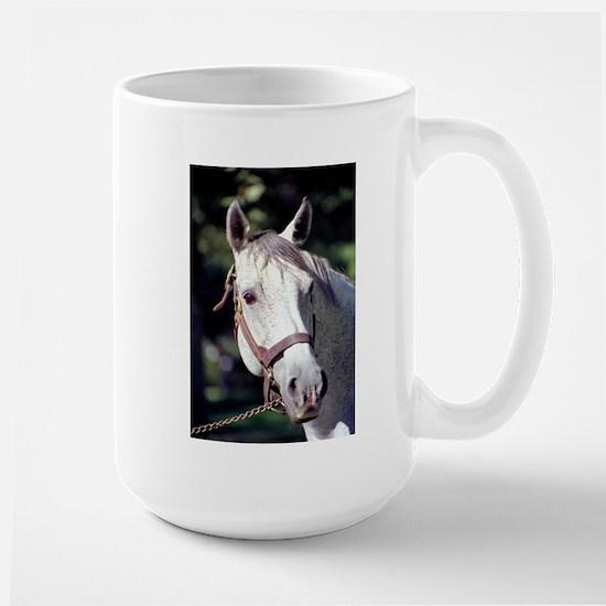 Spectacular Bid Large Mug