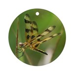 Halloween Dragon Fly Ornament (Round)