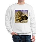 Cats in Egypt Sweatshirt