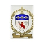 PATE Family Crest Rectangle Magnet (100 pack)