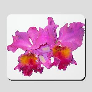 Pink Cattleya Mousepad