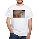 Cat Nap White T-Shirt