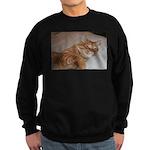 Cat Nap Sweatshirt (dark)