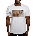 Cat Nap Light T-Shirt