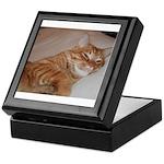 Cat Nap Keepsake Box