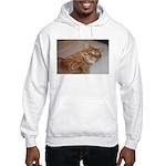 Cat Nap Hooded Sweatshirt