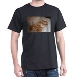 Cat Nap Dark T-Shirt