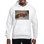 Tabby Hooded Sweatshirt