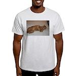 Tabby Light T-Shirt