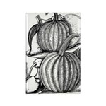 Pumpkin and mouse Rectangle Magnet (100 pack)