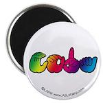 Rainbow CODA Magnet