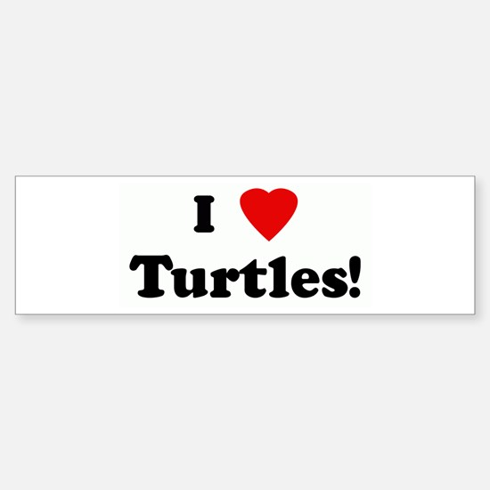 I Love Turtles! Bumper Bumper Bumper Sticker