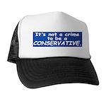 Not a Crime -- Trucker Hat