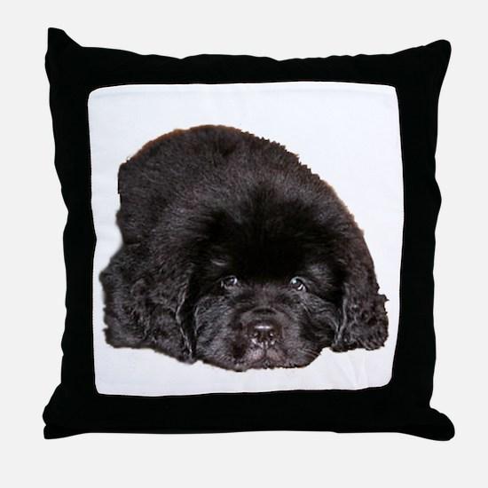 Newfoundland Puppy Dog Throw Pillow