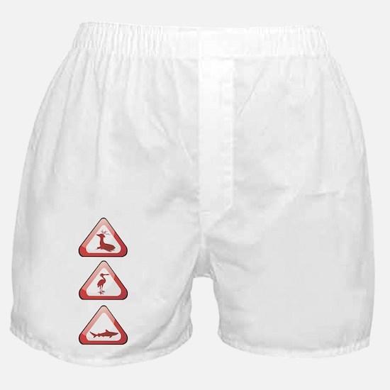 Zoo Boxer Shorts