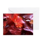 Red Leaves Greeting Cards (Pk of 10)