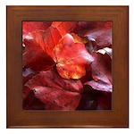 Red Leaves Framed Tile