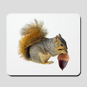 Squirrel Eating Acorn Mousepad