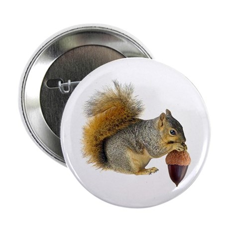 "Squirrel Eating Acorn 2.25"" Button"