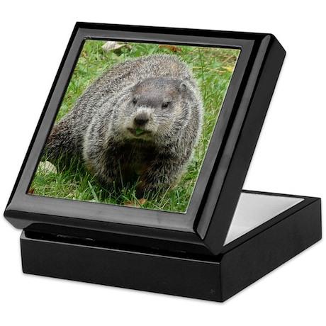 Groundhog Eating Keepsake Box