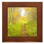 Aspen Trail Deer Framed Tile
