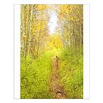 Aspen Trail Deer Small Poster
