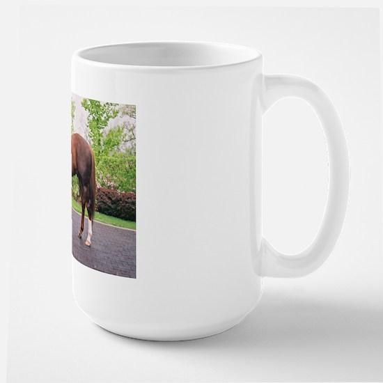 GIANTS CAUSEWAY Large Mug