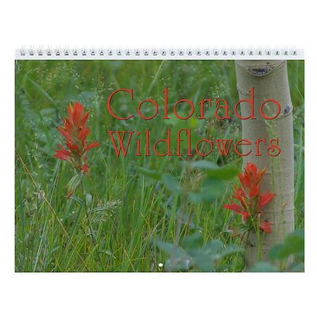 Colorado Wildflowers Vol 1 Wall Calendar