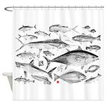 mutli fish Shower Curtain